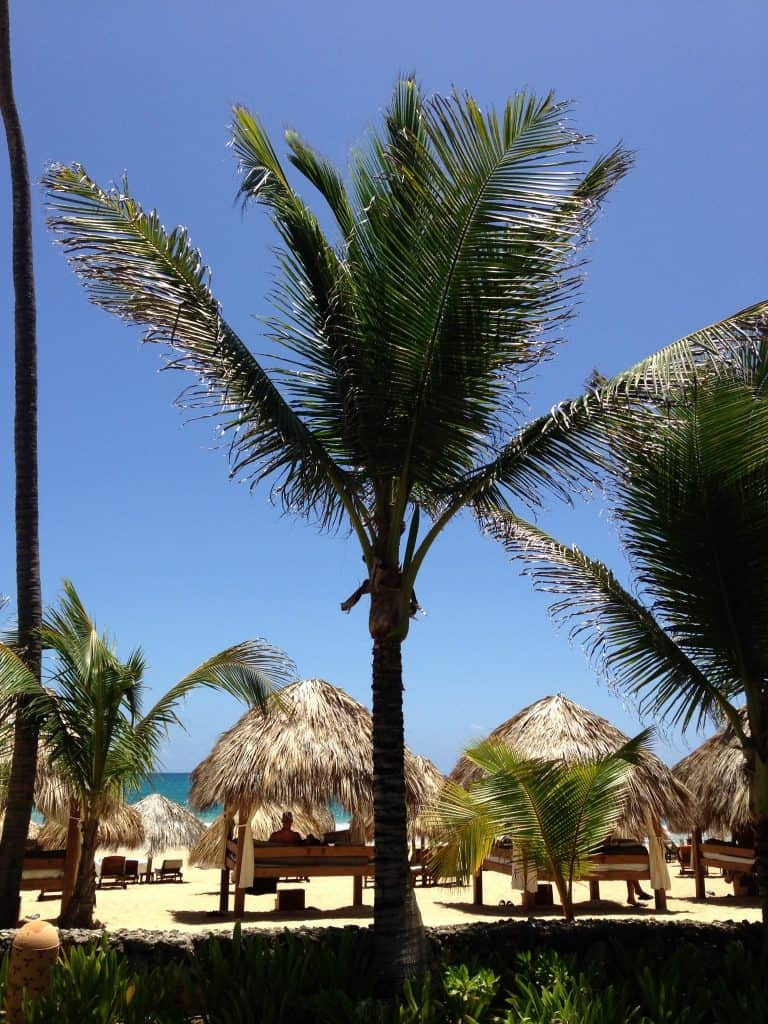 Excellence Punta Cana Dominican Republic Review Video All