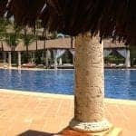 excellence punta cana beds at the pool