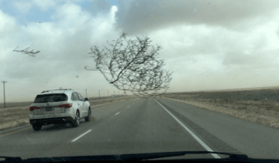 Crazy Texas Tumbleweed and Dust Storm During Family Road Trip Video
