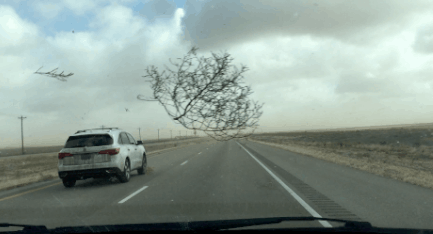Crazy-Texas-Tumbleweed-and-Duststorm-During-Family-Road-Trip-Video.png