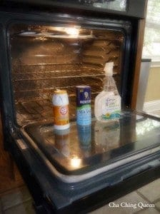 what you need to clean your oven without chemicals