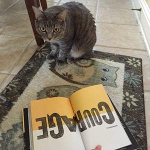 life-is-good-flash-cat-reads-book