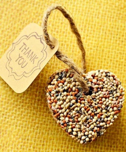Birdseed Wedding or Party Favors - DIY Craft Idea