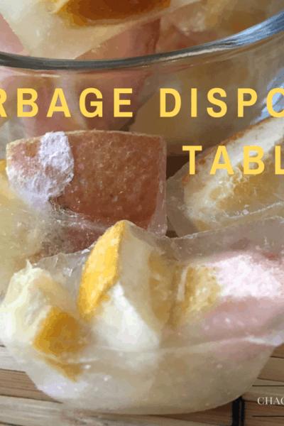 DIY Garbage Disposal Tablets