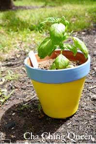 diy homemade gift flower pot fathers day herbal herbs basil pot