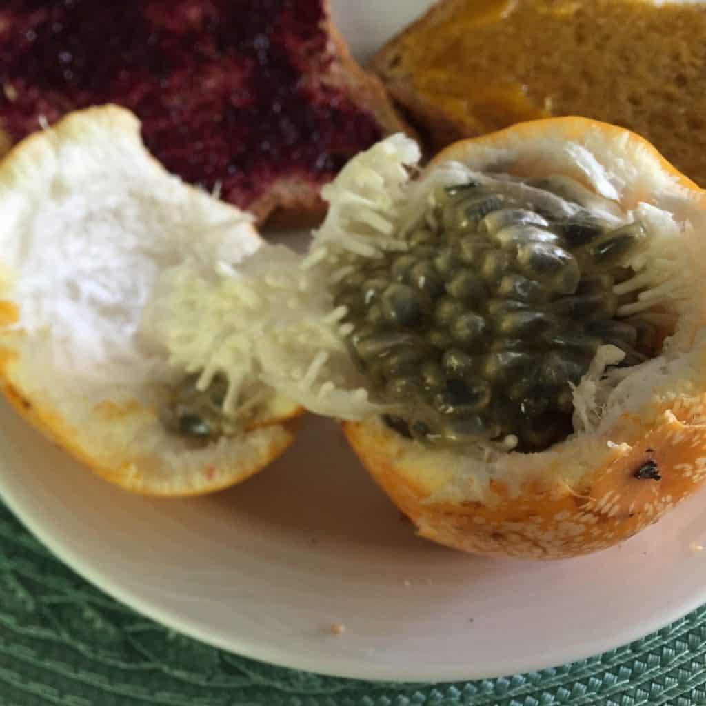 Jardin del Eden Boutique Hotel Review fruit grenadina breakfast