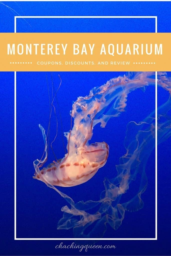 photo about Monterey Bay Aquarium Printable Coupon titled 2019 Monterey Bay Aquarium Discount coupons, Cost savings, Totally free Tickets