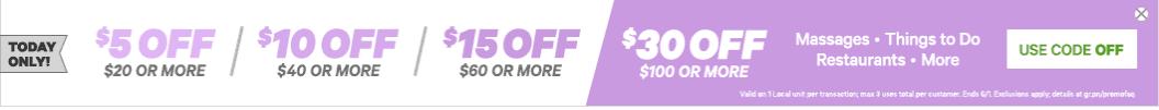 groupon coupon code june 2017
