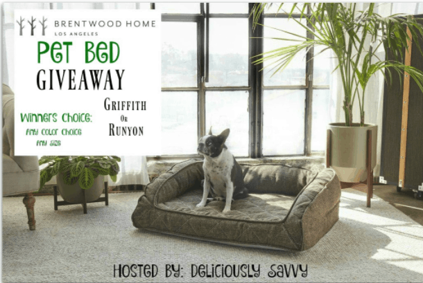 Giveaway: Brentwood Home Pet Bed (ends February 3)