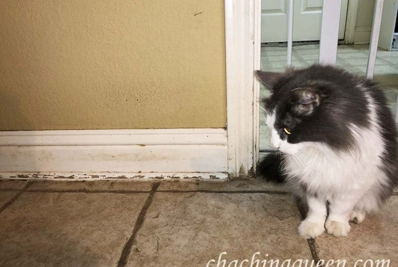 how to quickly clean baseboards that are scratched from cha ching queen