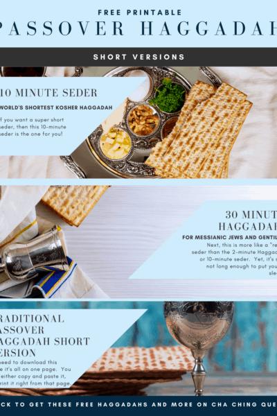passover haggadah short version infographic